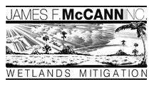 mccann-wet-logo