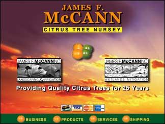 mccann-cd-home-copy
