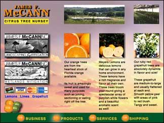 mccann-cd-product-copy